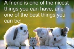 A friend is one of the nicest things you can have, and one of the best things you can be