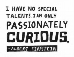 Albert Einstein - I have no special talents. I am only passionately curious