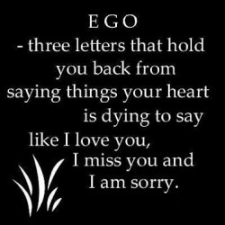 Ego three letters that hold you back from saying things your heart is dying to say like I love you, I miss you and I am sorry