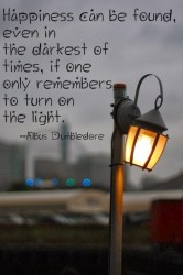 Happiness can be found, even in the darkest of times, if one only remembers to turn on the light. Albus Dumbledore