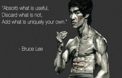 Absorb what is useful, Discard what is not, Add what is uniquely your own - quote by Bruce Lee