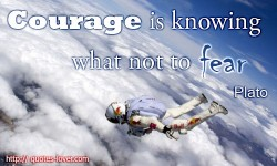 Courage is knowing what not to fear Plato quote