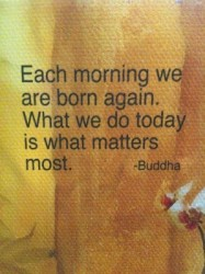 Each morning we are born again. What we do today is what matters most.Buddha quote