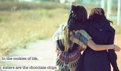 In the cookies of life, sisters are the chocolate chips