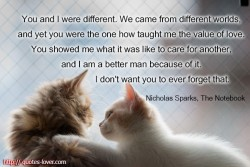 Nicholas Sparks - The notebook. You and I were different. We came from different worlds, and yet you were the one how taught me the value of love. You showed me what it was like to care for another