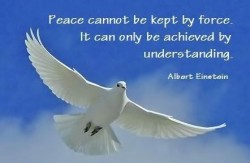 Peace cannot be kept by force. It can only be achieved by understanding. Albert Einstein quote
