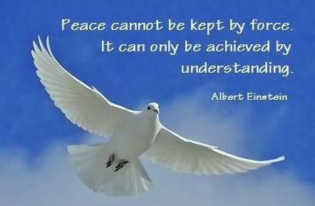 Albert Einstein Peace Quote