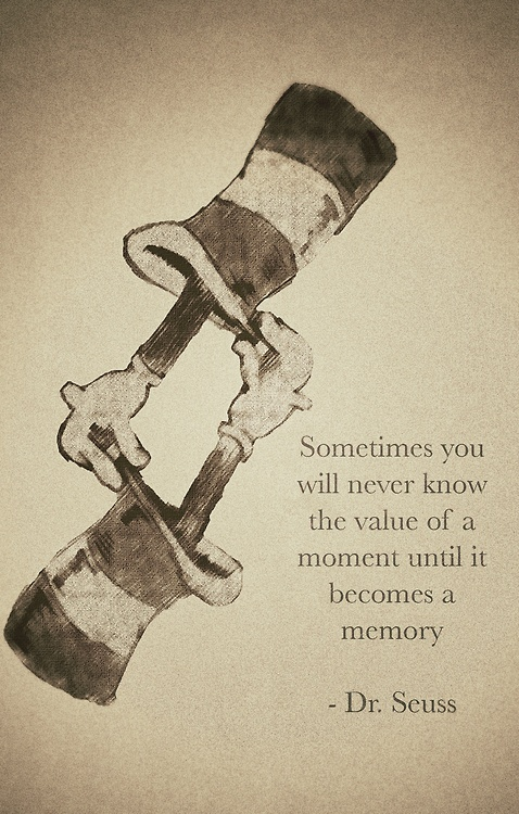 Sometimes you will never know the value of a moment until it becomes a memory.Dr.Seuss quotes