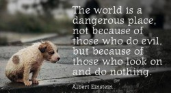 The world is a dangerous place, not because of those who do evil, but because of those who look on and do nothing - Quote by Albert Einstein