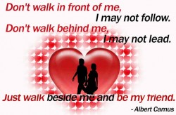 don't walk in front of me i may not follow don't walk behind me i may not lead just walk beside me and be my friend