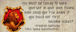 you must be ready to burn yourself in your own flame; how could you rise anew if you have not first become ashes