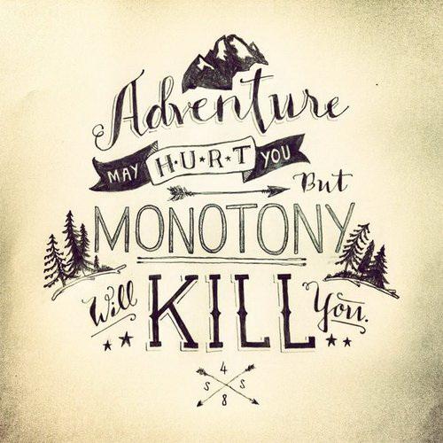 Adventure may hurt you but monotony will kill you.