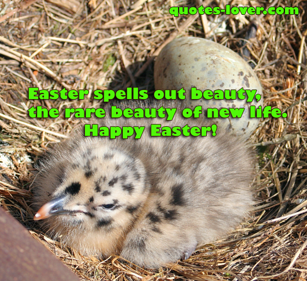 Easter spells out beauty, the rare beauty of new life. Happy Easter!