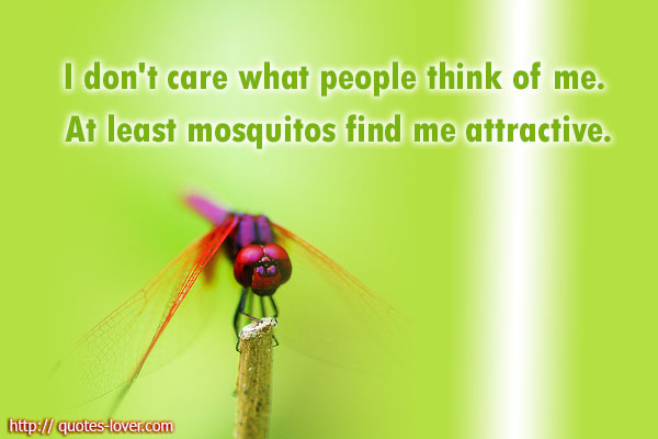 I don't care what people think of me. At least mosquitos find me attractive.