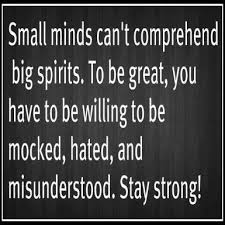 Small minds can't comprehend big spirits. To be great, you have to be willing to be mocked, hated, and misunderstood. Stay strong!