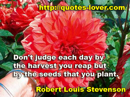 Don't judge each day by the harvest you reap but by the seeds that you plant.""