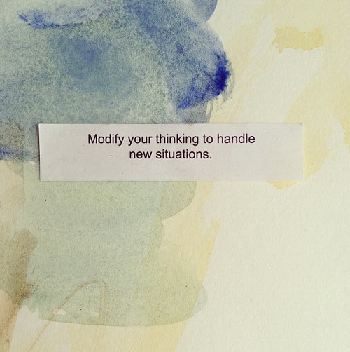 Modify your thinking to handle new situations.