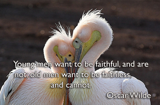 Young men want to be faithful, and are not; old men want to be faithless, and cannot.