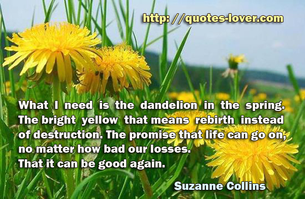 What I need is the dandelion in the spring. The bright yellow that means rebirth instead of destruction. The promise that life can go on, no matter how bad our losses. That it can be good again.