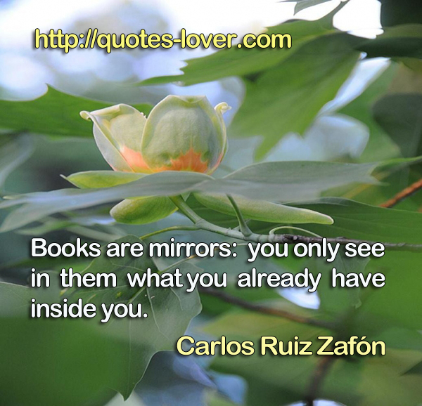 Books are mirrors: you only see in them what you already have inside you.