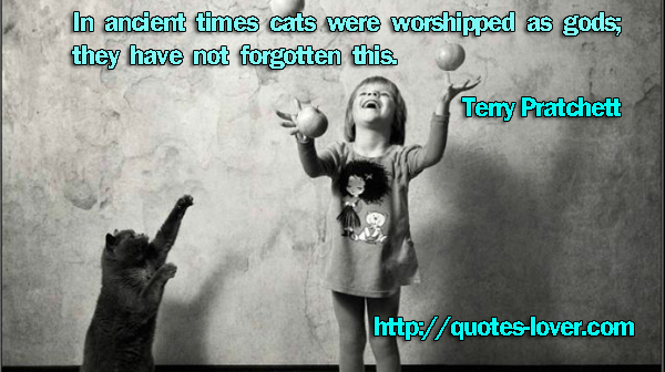In ancient times cats were worshipped as gods; they have not forgotten this.