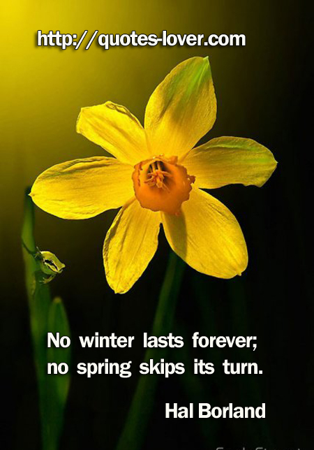No winter lasts forever; no spring skips its turn.