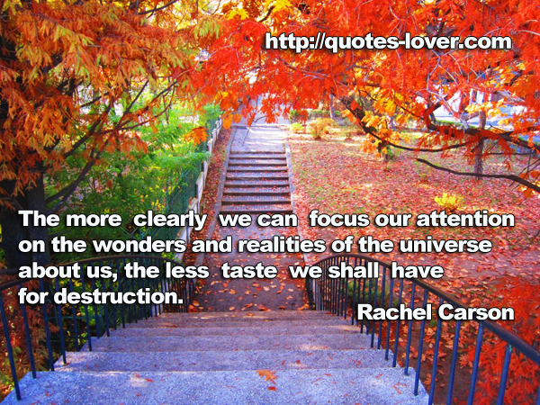 The more clearly we can focus our attention on the wonders and realities of the universe about us, the less taste we shall have for destruction.