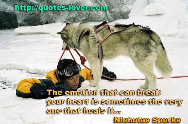 The emotion that can break your heart is sometimes the very one that heals it...