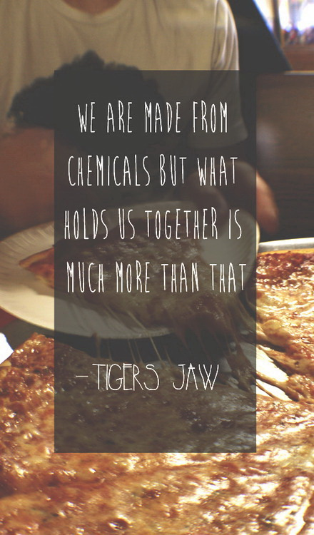 We are made from chemicals but what holds us together is much more than that