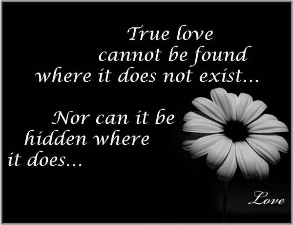 True love cannot be found where it does not exist. Nor can it be hidden where it does.
