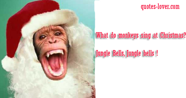 What do monkeys sing at Christmas ?  Jungle Bells, Jungle bells !