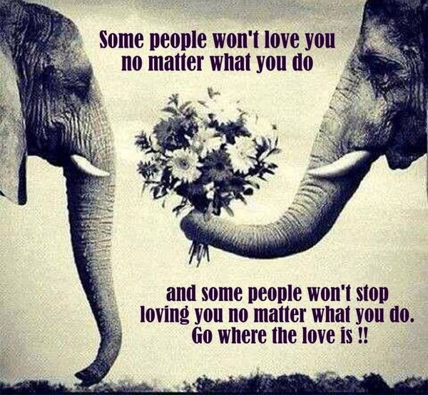 Some people won't love you no matter what you do and some people won't stop loving you no matter what you do. Go where the love is!!