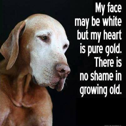 My face may be white but my heart is pure gold. There is no shame in growing old.