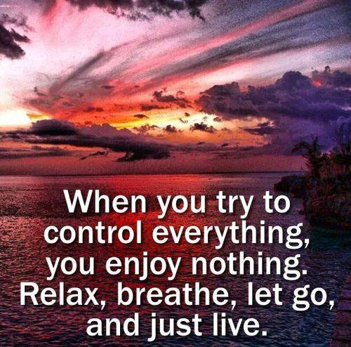 When you try to control everything, you enjoy nothing. Relax, breathe, let go, and just live.