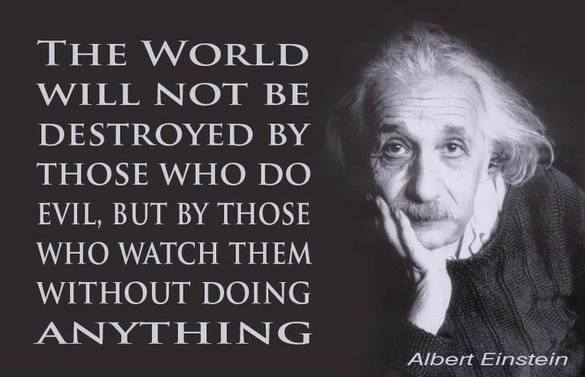 The world will not be destroyed by those who do evil, but by those who watch them without doing anything