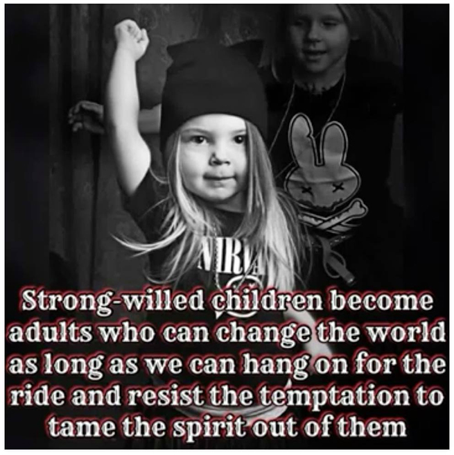 Strong-willed children become adults who can change the world as long as we can hang on for the ride and resist the temptation to tame the spirit out of them