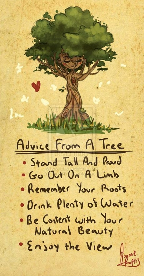 Advice from a tree. Stand Tall and Proud. Go out on a limb. Remeber your roots. Drink Plenty of water. Be content with your natural beauty. Enjoy the view