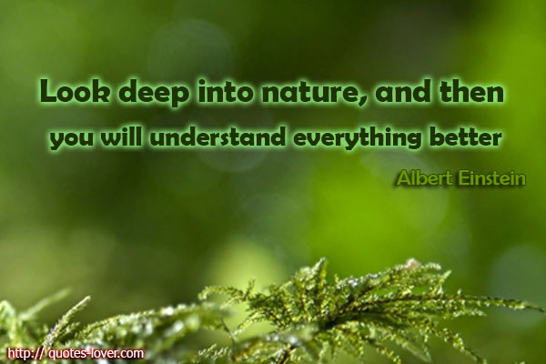 Look deep into nature, and then you will understand everything better