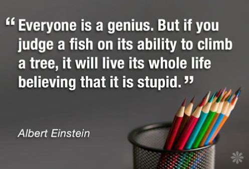 Everyone is a genius but if you judge a fish by its ability to climb a tree