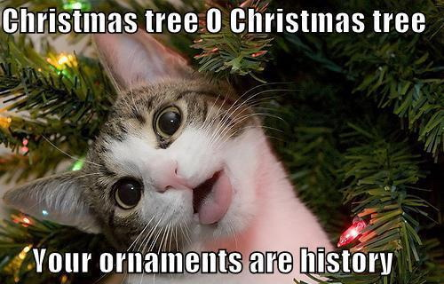 Christmas tree, Oh Christmas tree; Your ornaments  are history.