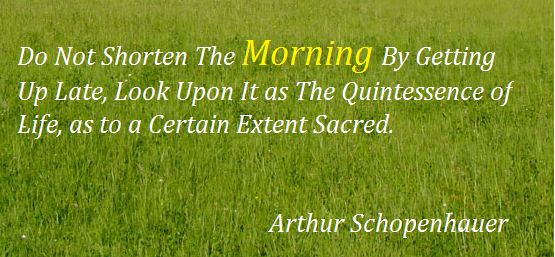 Do not shorten the morning by getting up late, look upon it as the quintessence of life as to a certin extent sacred