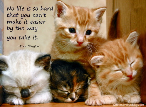No life is so hard that you cant make it easier by the way you take it.