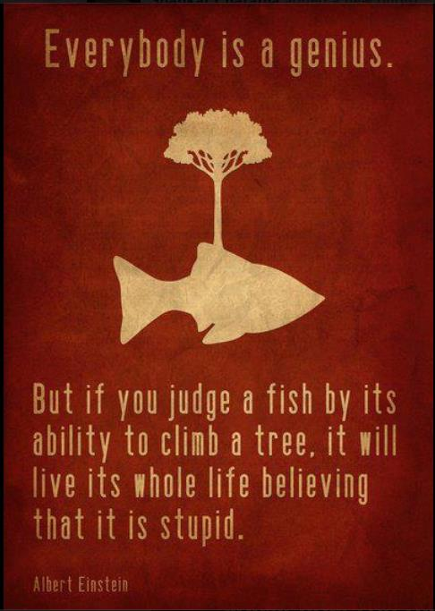 Everybody is a genius but if you judge a fish by its ability to climb a tree, it will live its whole life believing that its stupid.