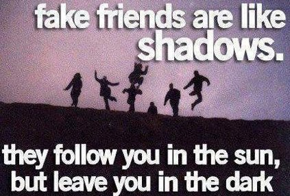 Fake friends are like shadows they follow you in the sun but leave you in the dark
