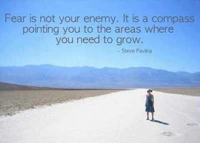 Fear is not your enemy. It is a compass pointing you to the areas where you need to grow