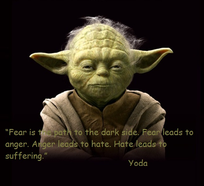 Fear is the path to the dark side. Fear leads to anger. Anger leads to hate. Hate leads to suffering