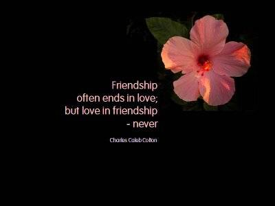 Friendship often ends in love but love in friendship never.