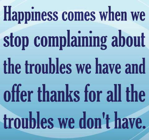 Happiness comes when we stop complaining about the troubles we have and offer thanks for all the troubles we don't have