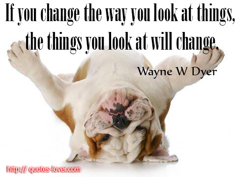 If you change the way you look at things, the things you look at will change.