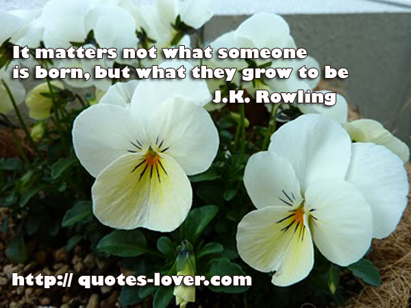 It matters not what someone is born, but what they grow to be